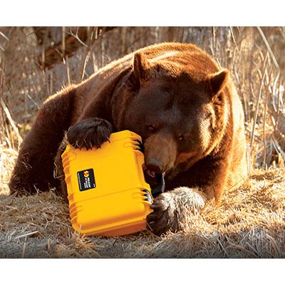 pelican peli products iM2100 toughest rugged hard bear case